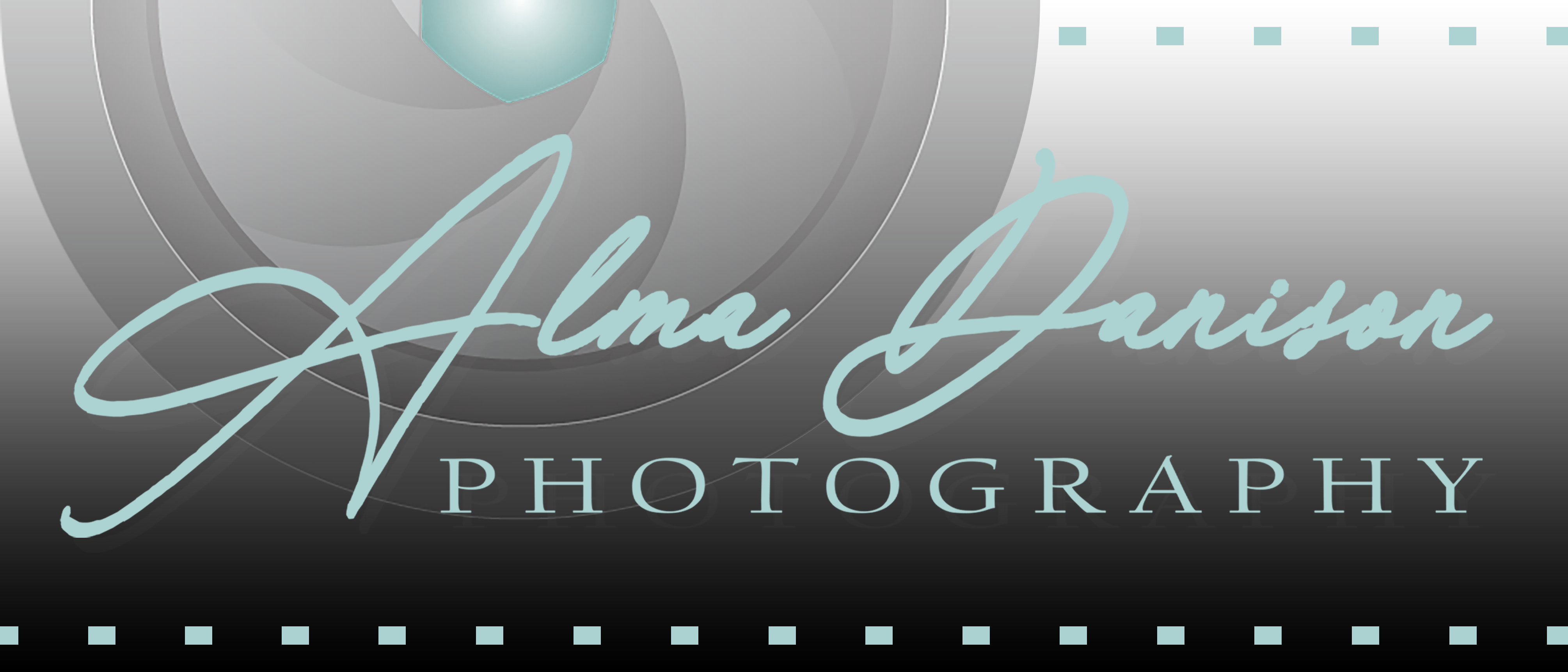 Alma Danison - Website